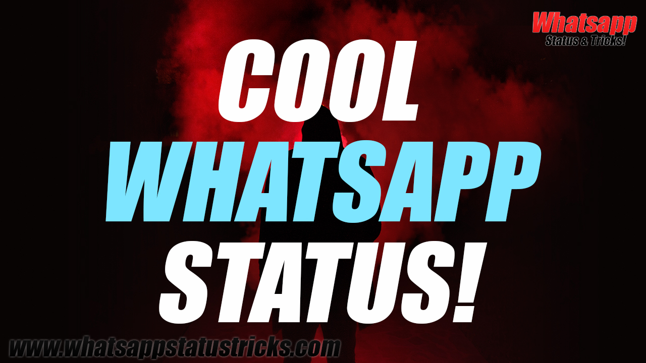Cool Whatsapp Status You'll Love!